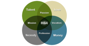 Shanti Yoga School - Teacher Training - Smart Goal Setting - Ikigai