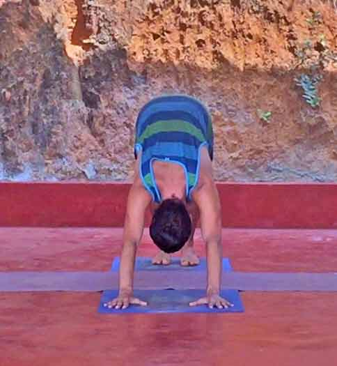 Shanti Yoga Teacher Training - Yoga Poses for Beginners - Downward Facing Dog From Front